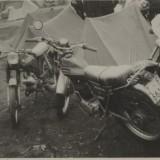 Arguis 1978
