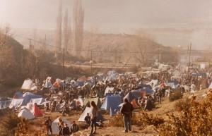 Arguis1980